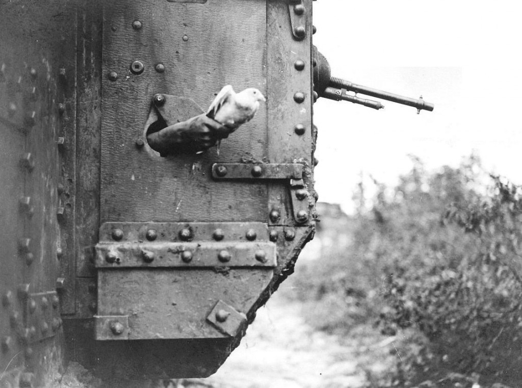 A pigeon being released from a port-hole in the side of a tank, near Albert in August 1918. IWM Q9247.
