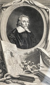 William Harvey,  engraved by J. Houbraken after Bemmel, Amsterdam, 1739