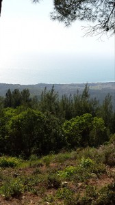 View from Chunuk Bair across the gullies towards the landing beaches in the distance